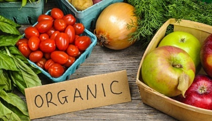 В Украине - более 210 сертифицированных органических предприятий, которые выращивают биопродукцию на 410 га