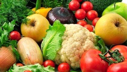 Из производителей сезонных овощей заработать смогли те, кто вовремя переориентировался на экспорт сортовых высокого качества