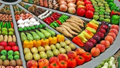 На современном украинском овощном рынке происходит позитивное движение от нынешней стихийности к планированию