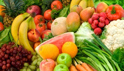 У місті Нова Каховка Херсонської області відбувся Нідерландсько-Український форум, присвячений питанням виробництва та переробки овочів, фруктів і ягід