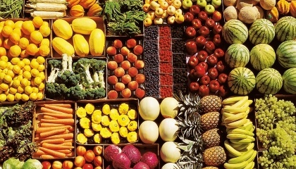 За год Узбекистан использовал более $100 млн кредитной линии Всемирного банка для развития производства, хранения и переработки овощей и фруктов, и это только деньги от одного донора