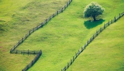 Право на земельный пай удостоверяется сертификатом на право на земельную долю (пай)