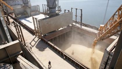 Стоимость перевалки зерна в морских портах будет уменьшаться, поскольку растет конкуренция. В ближайшие годы цена перевалки составит $8-10