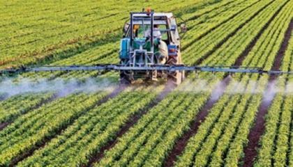 Импортеры поставляли в Украину в 2016 году более технологичные инсектицидные препараты с низкой нормой расхода на гектар