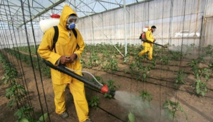В новом отчете совета по правам человека ООН эксперты жестко раскритиковали международные компании, производящие пестициды, и обвинили их в систематическом отрицании вредности, агрессивной и неэтичном маркетинговой тактике и активном лоббизме