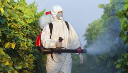 Європейська комісія очікує, що 70 біологічних пестицидів, затверджених за старими критеріями агрохімічної реєстрації ЄС, можуть бути класифіковані як препарати з «низьким ризиком»
