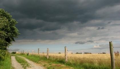 По информации Укргидрометцентра, грозы, шквальный ветер и град - типичные природные явления для начала лета в Украине