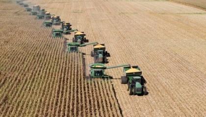 Зерновий експорт України перебуває в жорсткій конкуренції з зерновим експортом РФ і Казахстану. В підсумку, вплив українського експорту позначається передусім на суміжних для країн ринках