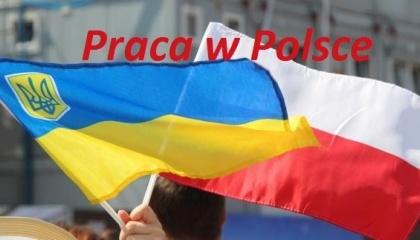 Если бы заробитчане из Украины перестали приезжать в Польшу, это было бы серьезной проблемой для польской экономики