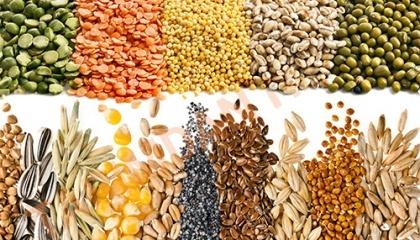 Завдяки аграрним розпискам погашення боргу з кредитором можна здійснити або коштами, або ж власною продукцією