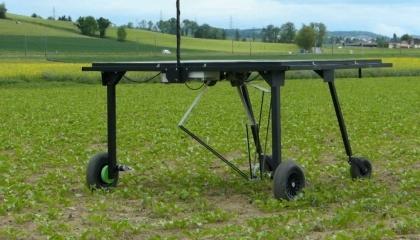 Робот Ecorobotix - теннисный стол, который борется с сорняками