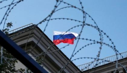 Основная доля российских поставок пришлась на сельхозпродукцию и продовольствие - 36% в общем объеме, или $264 млн