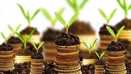 Вітчизняні аграрні компанії залучили 239 млн грн в 2016/2017 маркетинговому році за допомогою аграрних розписок