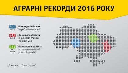 На Полтавщине в 2016 году было разведено 275 тыс. голов крупного рогатого скота - этот показатель оказался самым высоким по Украине