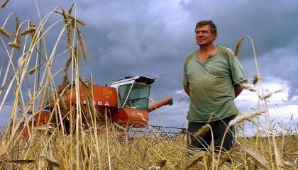 Уровень рентабельности в растениеводстве снизится против прошлогоднего результата на 1,7% - до 48,9%