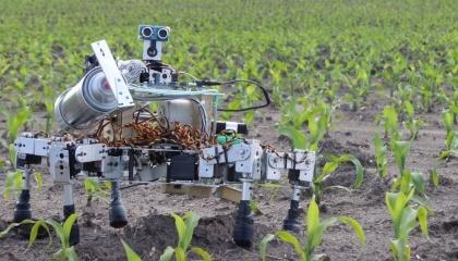 Prospero - робот, который умеет сажать семена. Этого робота-паука разработал инженер Дэвид Доурхаут