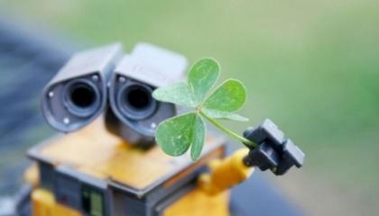 Чтобы запрограммиовать робота, задается специальный алгоритм действия с определенной последовательностью, например, посадка, полив, удобрение почвы. Руководить его работой можно с компьютера, планшета или смартфона
