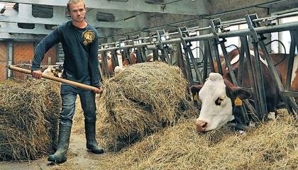 Больше всего за свой труд получают животноводы (19 332 грн), меньше всего – ветеринары (7 683 грн)