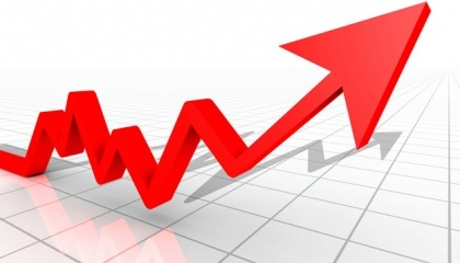 Цена на зерновые культуры урожая 2017 года возрастет минимум на 15%