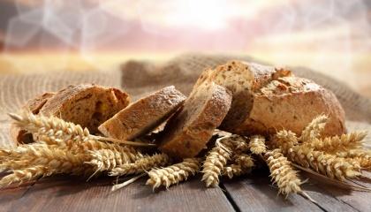 Три сезони поспіль Україна недосівала жито і збирала рекордно низькі врожаї. Перші два роки Україна «протрималася» за рахунок запасів, але в 2016/17 МР ситуація погіршилася