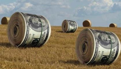 За даними Проекту IFC, з січня по червень 2016 року 11 малих господарств оформили аграрні розписки. За аналогічний період цього року їх кількість зросла до 28