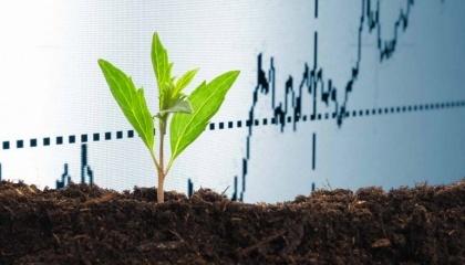 Одними з основних чинників зростання ринку органічних добрив по всьому світу є збільшення площі суші під органічної культивацією і поліпшення виробничого процесу органічних добрив