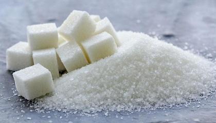 Якщо в 2013-2015 рр. експорт цукру впав на 7%, то за 9 місяців поточного року він зріс на 45% до аналогічного періоду минулого року