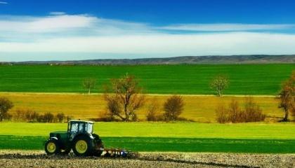 Ожидается увеличение объемов производства пшеницы, ржи, гречихи, гороха, риса, рапса и картофеля