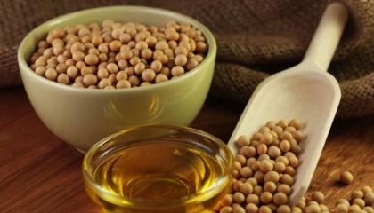 Найбільшим виробником соєвої олії за вересень-червень 2016/17 МР в Україні став агропромхолдинг «Астарта-Київ»