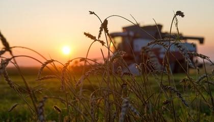 Аналізуючи ситуацію, аграрії шукають спосіб, аби вести ефективний бізнес, що передбачає запровадження інструментів мінімізації впливу погоди