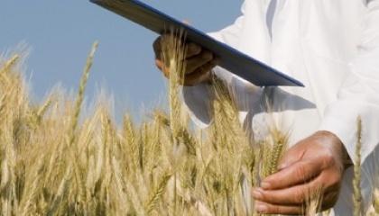 Загальний обсяг відповідальності за аграрним договорами становить понад 1 млрд грн