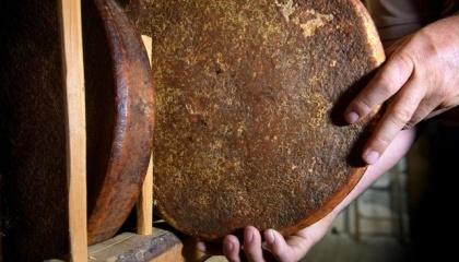 У швейцарському селі Гріменц, яке розташоване у франкомовній частині кантону Вале, знайшли головку сиру 142-річної давності
