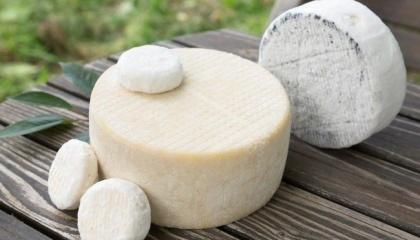 В Україні з'являється все більше фермерів, які виробляють якісний крафтовий сир з молока