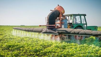 Санкции повлияли на Россию не только негативно, они дали ощутимый толчок развитию сельского хозяйства в стране, началось активное финансирование государством фермерских хозяйств
