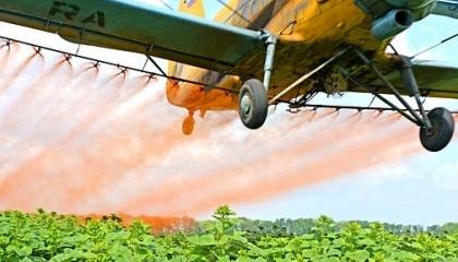 По оценкам специалистов, отечественный рынок потребления средств защиты растений ежегодно растет на 15-20%, что требует дополнительного количества импорта пестицидов, а значит расходов валюты