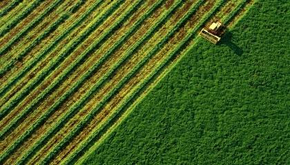 """Компанія """"ТАС Агро"""" планує розширити земельний банк на 20-30 тис. га для розвитку зернового напрямку та вирощування сировини для біоенергетики"""