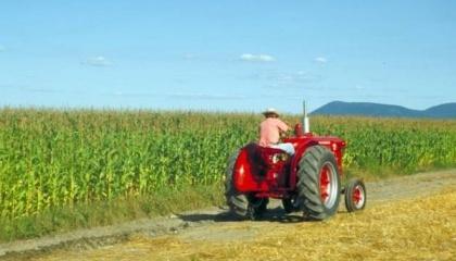 Ключові українські заводи, які виробляють сільгосптехніку, уже досягнули рівня локалізації до 50%