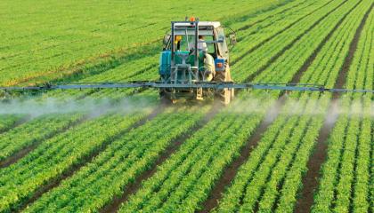 Агрохолдинги Прикарпатья не будут использовать авиацию во время обработки угодий средствами защиты растений