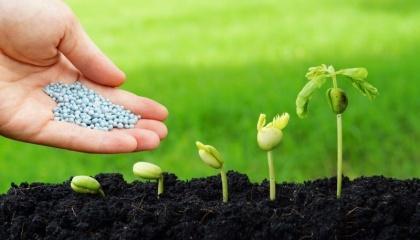 Основными поставщиками пестицидов в зимние месяцы были компании Syngenta, Monsanto, Bayer, BASF, что обусловлено стратегическим решением обеспечить основные поставки препаратов на начало года