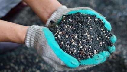 З настанням сезону річних жнив багато сільгоспвиробників починають думати про необхідність нутріентної підгодівлі земель перед посадкою озимої пшениці