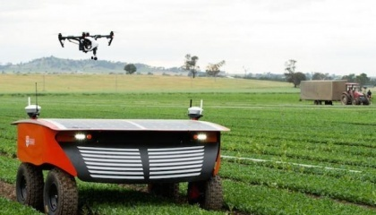 RIIPA — робот, который может оценить урожайность посевов