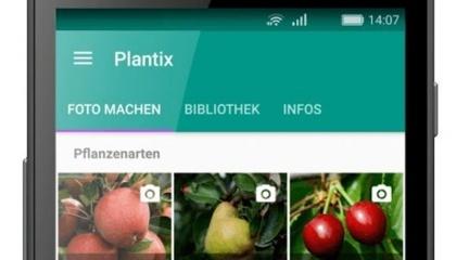 Додаток Plantix, розроблений одним з ганноверских стартапів, допомагає фермерам розрізняти шкідливі комахи та хвороби рослин