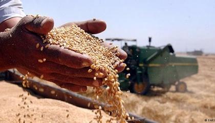 Якщо в Україні триватиме тенденція використання новітніх технологій та збільшення врожайності, то до 2022 року вітчизняні аграрії зможуть вирощувати біля 100 млн т зернових та олійних культур