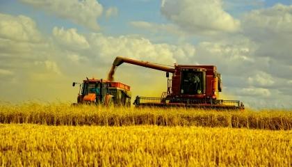Статистические данные о состоянии технического парка отечественного АПК указывают на то, что Украина подходит к черте, за которой не сможет справляться с уборкой своего наибольшего богатства - пшеницы