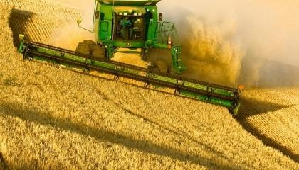 Минсельхоз России дает неутешительный прогноз на следующий год. В то же время, государство оказывает содействие аграриям, снижая цены на логистику