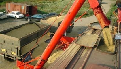 """""""Укрзализныця"""" не имела особого интереса вкладываться в обновление парка зерновозов, поскольку такой тип вагонов интенсивно используется только 4-5 месяцев в году"""