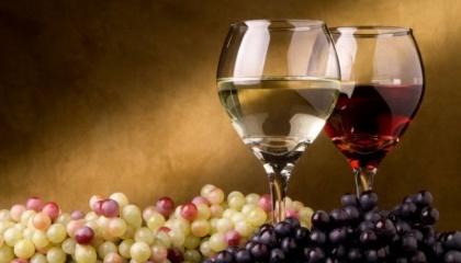 В Украине есть географически-почвенные условия для увеличения площадей под виноград до 300 тыс. га