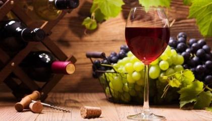 Виноделие - это очень дорогое удовольствие, поэтому при отсутствии государственной поддержки его развитие невозможно