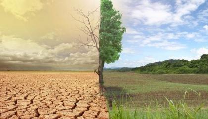 Природные изменения в сочетании с технологиями, которые на протяжении многих лет истощали почву, покажут реальные последствия бездумного хозяйствования