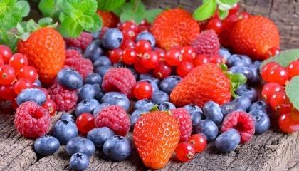 Из-за майских заморозков Украина вполне может остаться не только без варенья, но и без свежей сезонной клубники и малины. Ягодные культуры будут в дефиците, а цена ягодной продукции будет значительно выше, чем в прошлом году